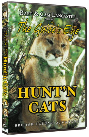 The Guide's Eye - Hunt'n Cats