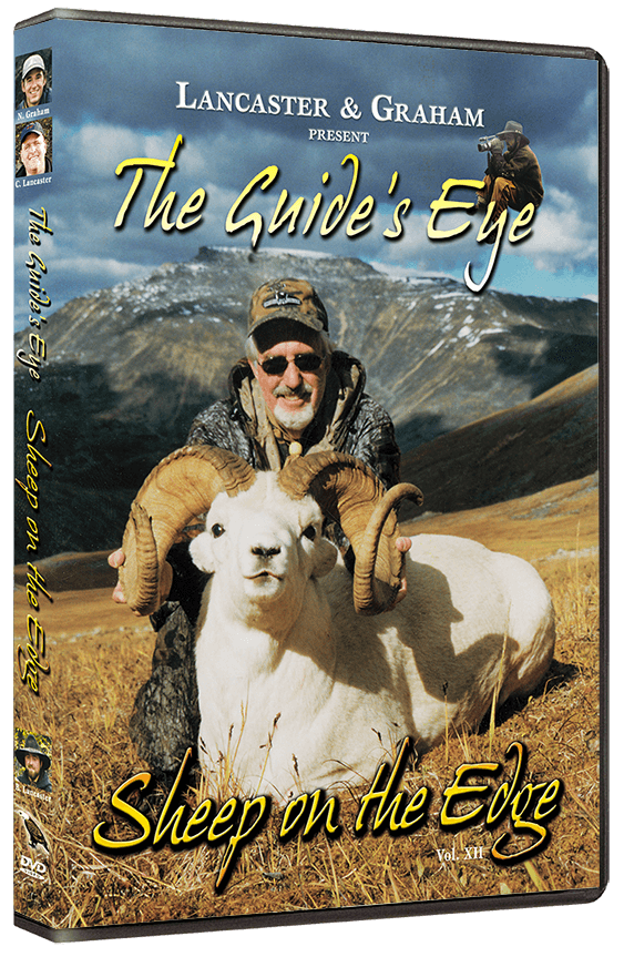 The Guide's Eye - Sheep on the Edge
