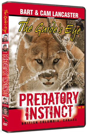 The Guide's Eye - Predatory Instincts